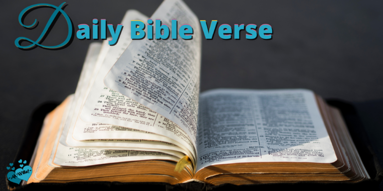 DailyBibleVerse header for Ah,Willa! © copyright